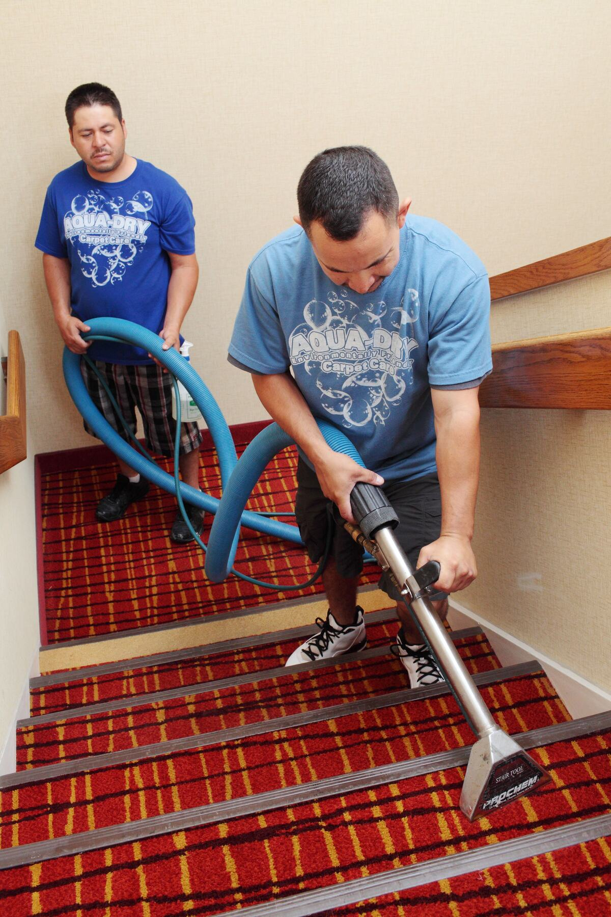 Professional Carpet Cleaning, Staircase